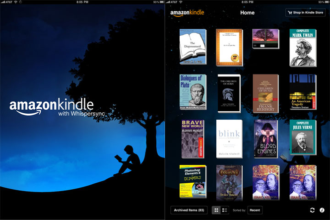 Kindle Screenshot 3