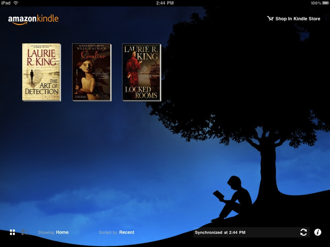 Kindle Screenshot 4