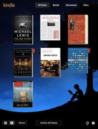 Kindle Screenshot 5