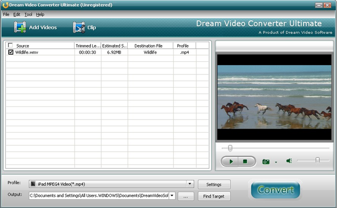 Dream FLV to WMV Converter Screenshot
