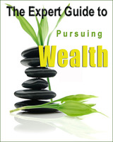 The Expert Guide to Pursuing Wealth Screenshot