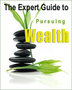 The Expert Guide to Pursuing Wealth 2