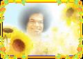 Sathya Sai Baba - Blooming Flower 1