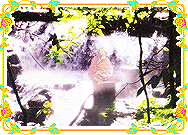 Anand Krishna Meditating at waterfall Screenshot 1
