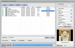bvcsoft DPG to FLV Video Converter Screenshot