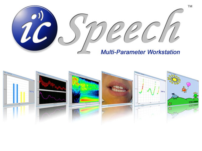 icSpeech Standard Edition Screenshot