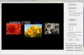 VISCOM 3D Carousel SDK ActiveX 1