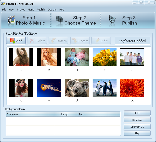 Pobosoft Flash ECard Maker Screenshot