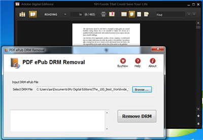 PDF ePub DRM Removal Screenshot