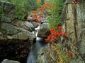 Rapid Mountain River Screensaver 1