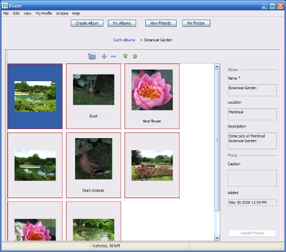 Bloom Screenshot 2
