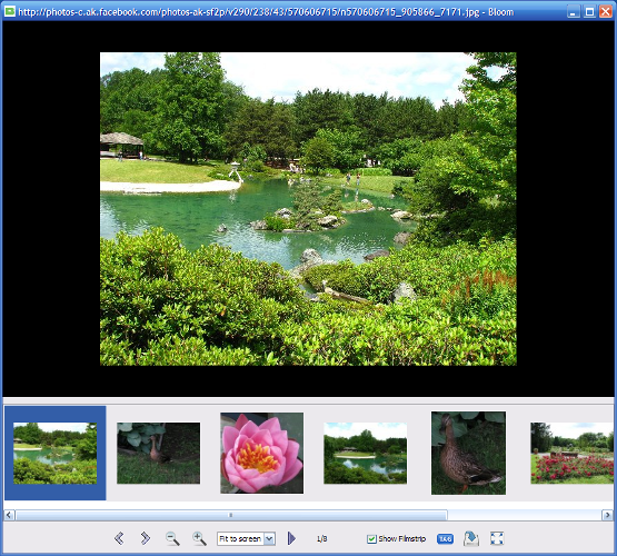Bloom Screenshot 3