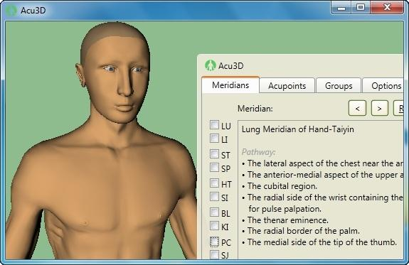 Acupuncture3D Screenshot 1
