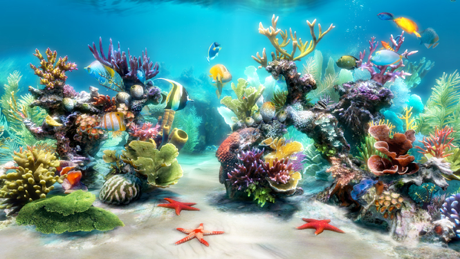 Sim Aquarium Screenshot 1