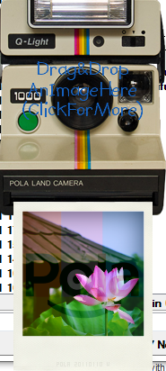 Pola Screenshot 3