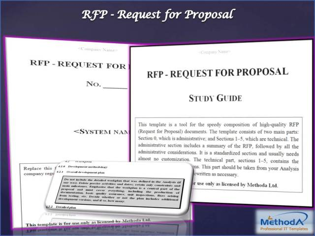 RFP Response Template Screenshot 1