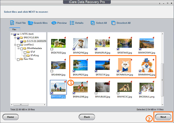 icare data recovery pro 8.0.0 license key
