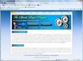 Speak Logic Information Analysis for Internet Explorer 1