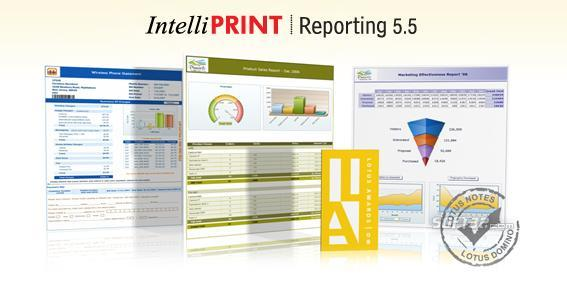 IntelliPRINT Reporting Screenshot 2