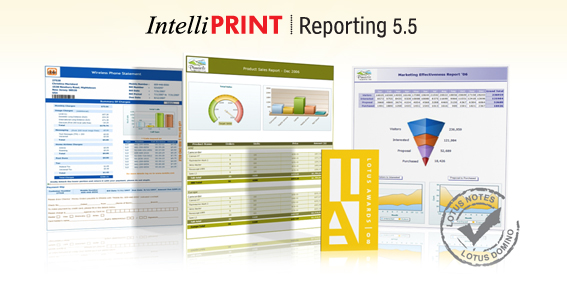 IntelliPRINT Reporting Screenshot