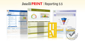 IntelliPRINT Reporting 1