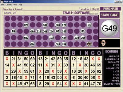 Tams11 Bingo Blitz Screenshot