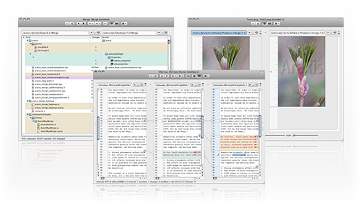 Araxis Merge for OS X Screenshot