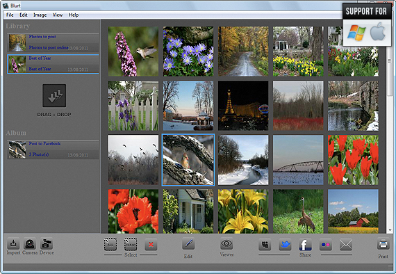 Windows Photo Editing & Photo Watermark Screenshot