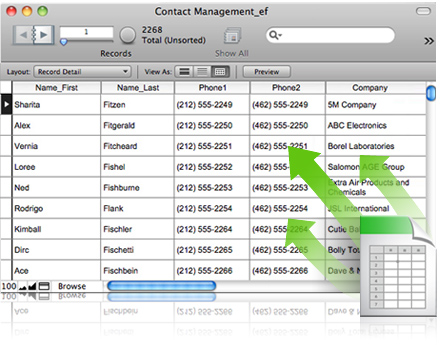 FileMaker Pro Screenshot 3