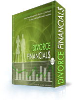 Divorce Financials Software Screenshot