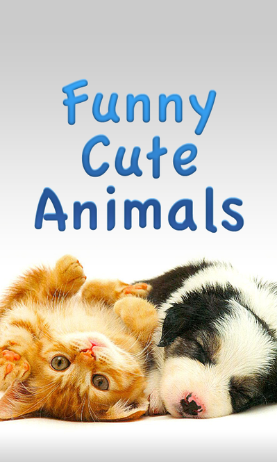 Funny Cute Animals Screenshot