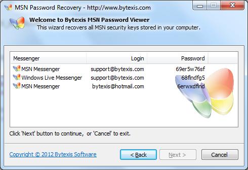 Bytexis MSN Password Recovery Screenshot