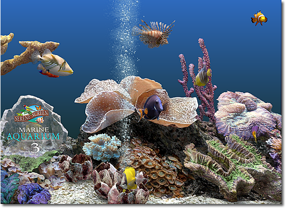 Marine Aquarium Screenshot 2