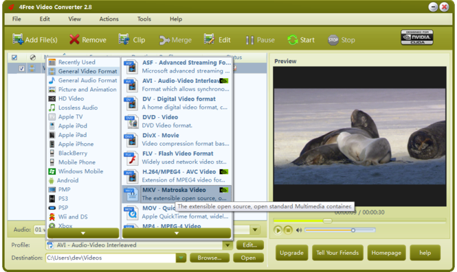 4Free Video Converter Screenshot 3