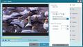 Free CUDA Video Converter 2
