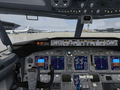 Microsoft Flight Simulator X 3