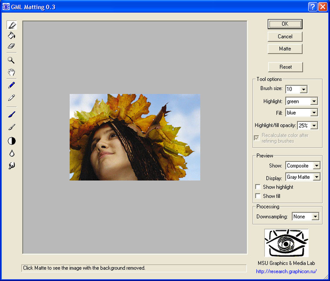 GML Matting Screenshot 1