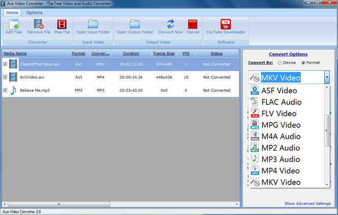 Ace Video Converter Screenshot 1