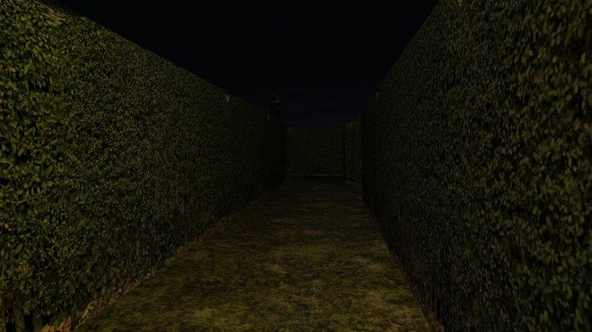 Slenderman's Shadow - Claustrophobia Screenshot