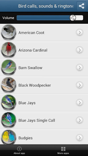 Bird Calls, Sounds & Ringtones Screenshot