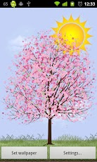 Lonely Cherry Blossom Tree LW Screenshot