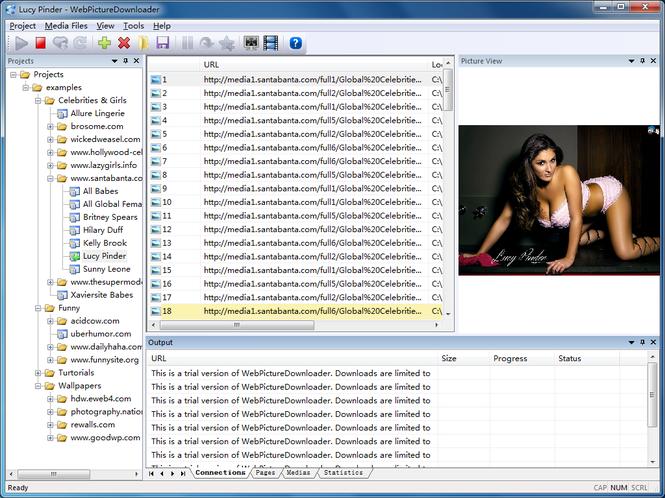 WebPictureDownloader Screenshot 1
