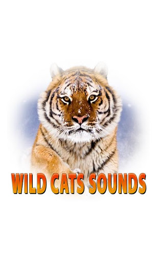 Wild Cats Sounds Screenshot 1