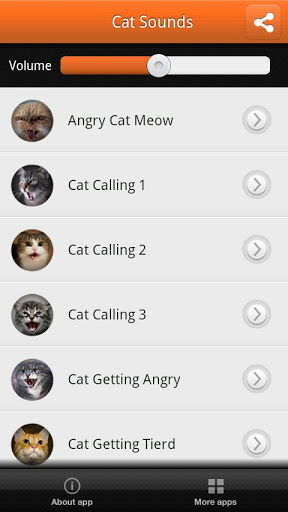 Cats Sounds Screenshot