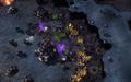 StarCraft II: Starter Edition 1