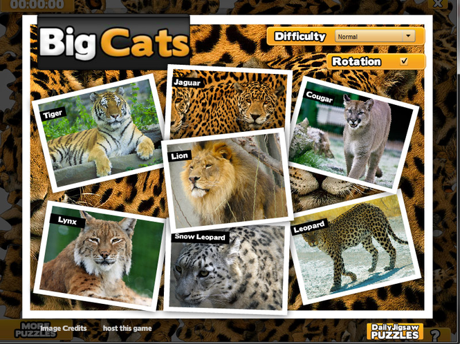 Big Cats Jigsaw Puzzle Screenshot