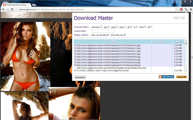 Download Master Screenshot 1