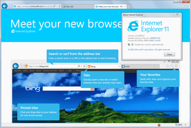 Internet Explorer 11 Screenshot