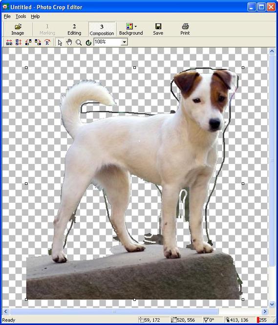 Photo Crop Editor Screenshot 2