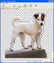 Photo Crop Editor 2